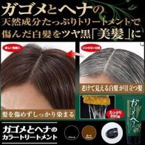 Saccharina sculpera and Henna Color Treatment Dark Brown 12 Pieces Set